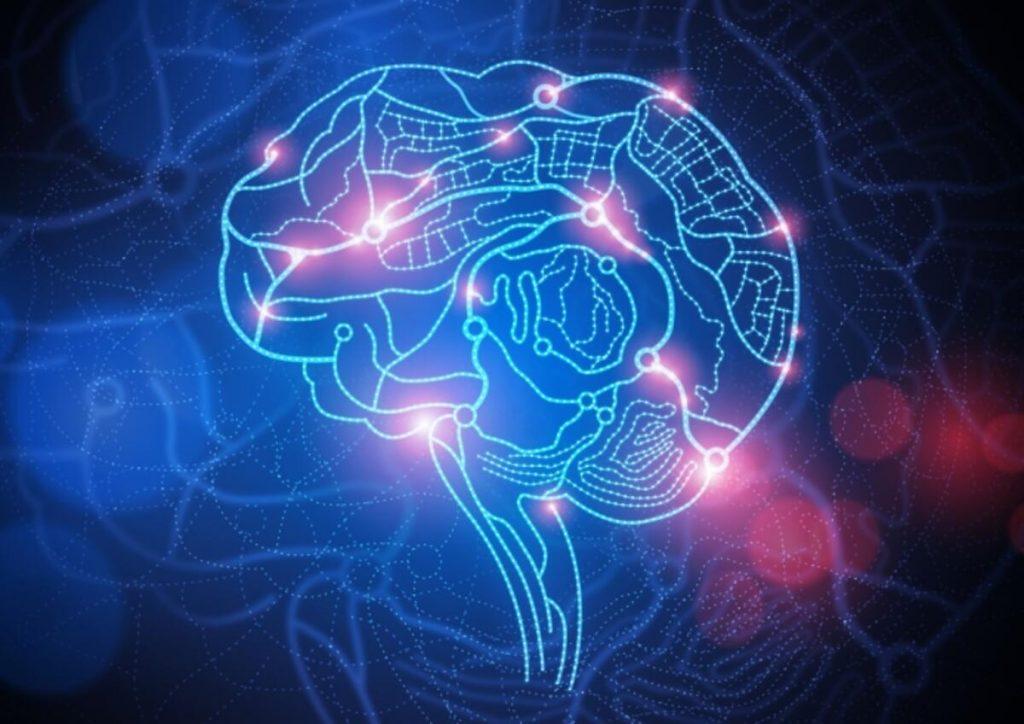 nöroplastisite ile verimli ders çalışma