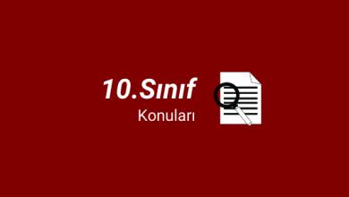 10. sınıf konuları