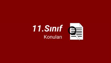 11. sınıf konuları