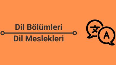 dil bölümleri